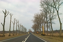 20110322162