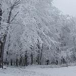 Grudzień 2008 zejście w kierunku Przełęczy Tompadło