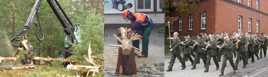 technika leśne