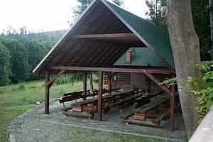 Miejsce naszych spotkań - szkółka w Leśnictwie Zielona