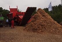 biomasa leśna