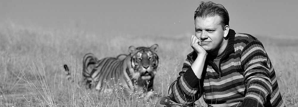 Tygrys - Tiger - Panthera tigris