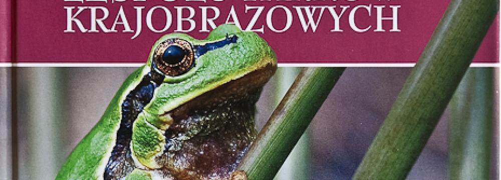 książka_płazy