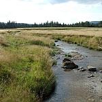 Jeleni potok, fot. Teresa Podgórska