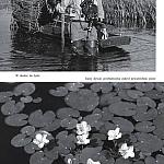 zdjęcia z albumu