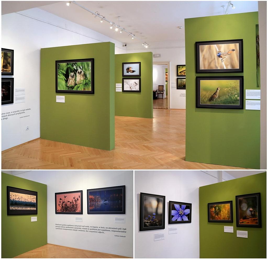 4 Wystawa 5
