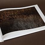 Album TERRA, Maciej Fiszer 8