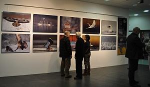 Wernisaż wystawy