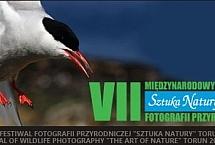 sztuka natury 2014 logo