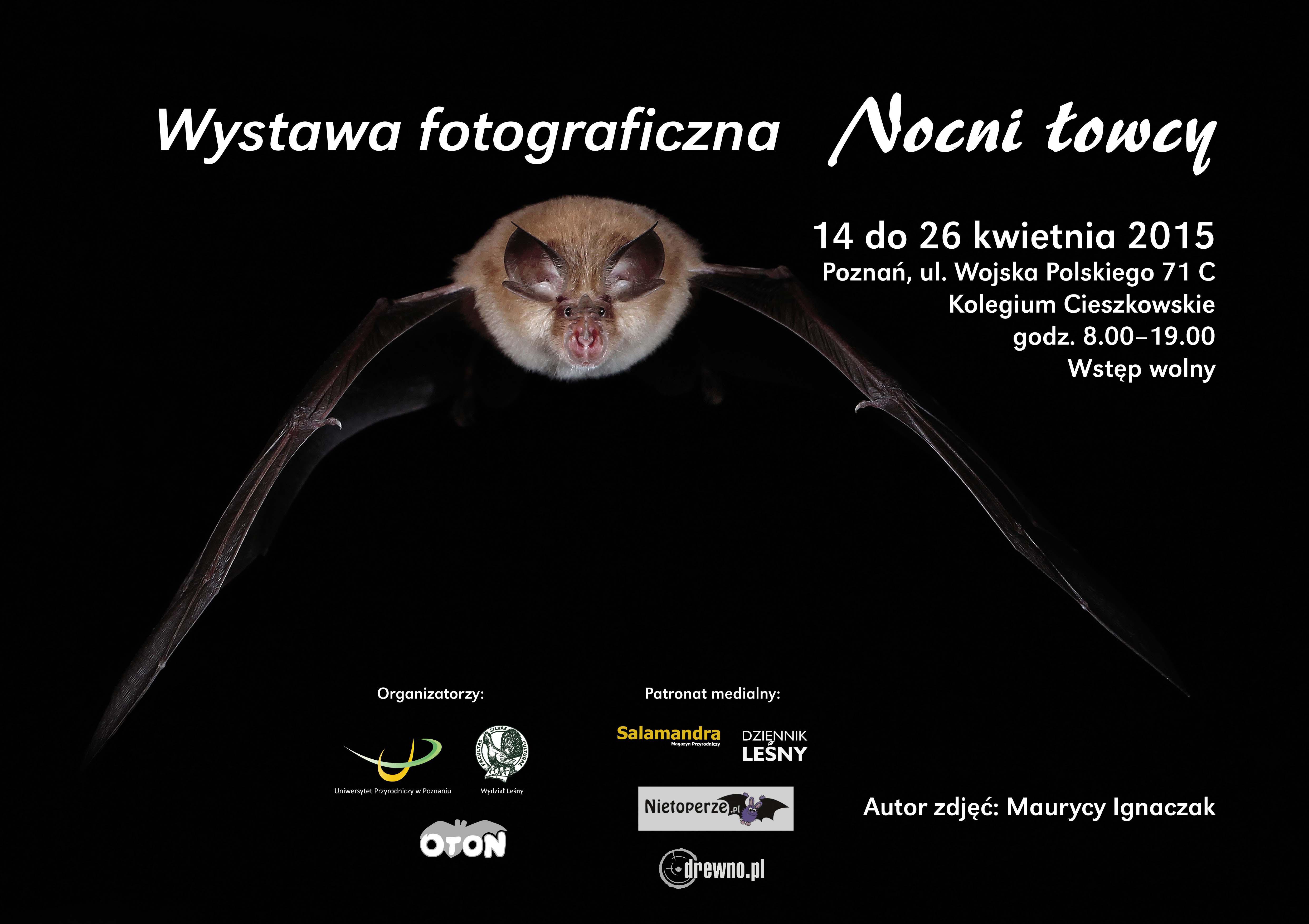 nietoperze_wystawa