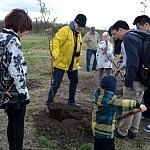 sadzenie drzew 18.04 (25)