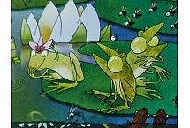 żaby 5