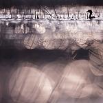 Przepływając o zmierzchu, fot. Michel d'Oultremont, Belgia