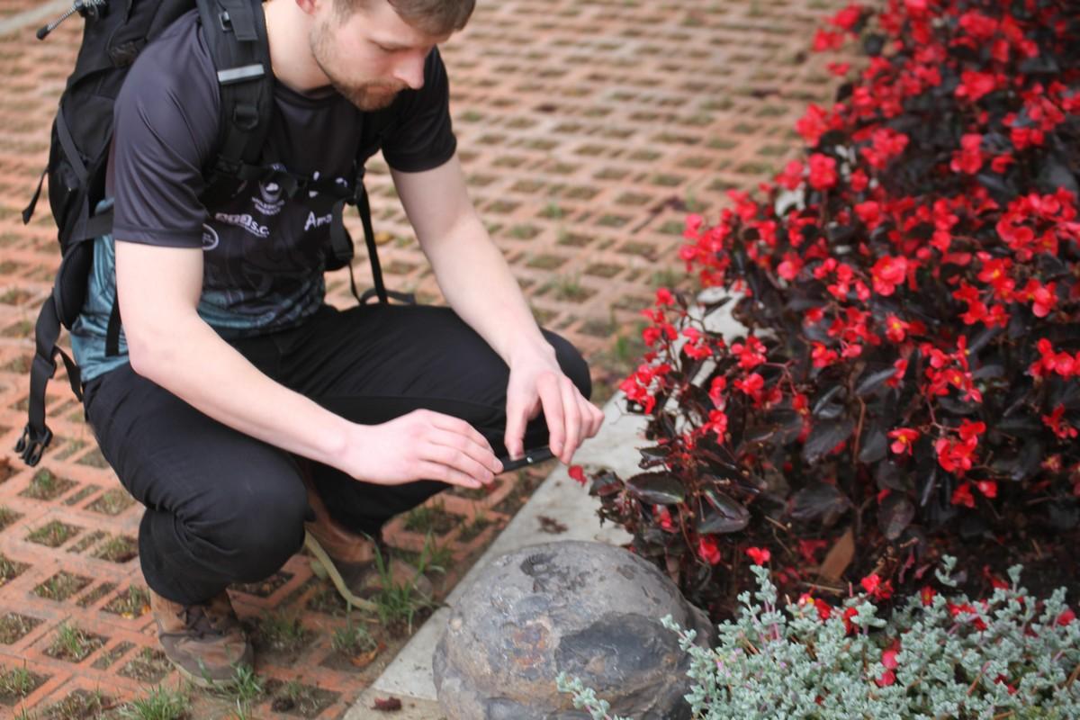 Mateusz, uczestnik wyprawy przy fotografowaniu kępy begonii