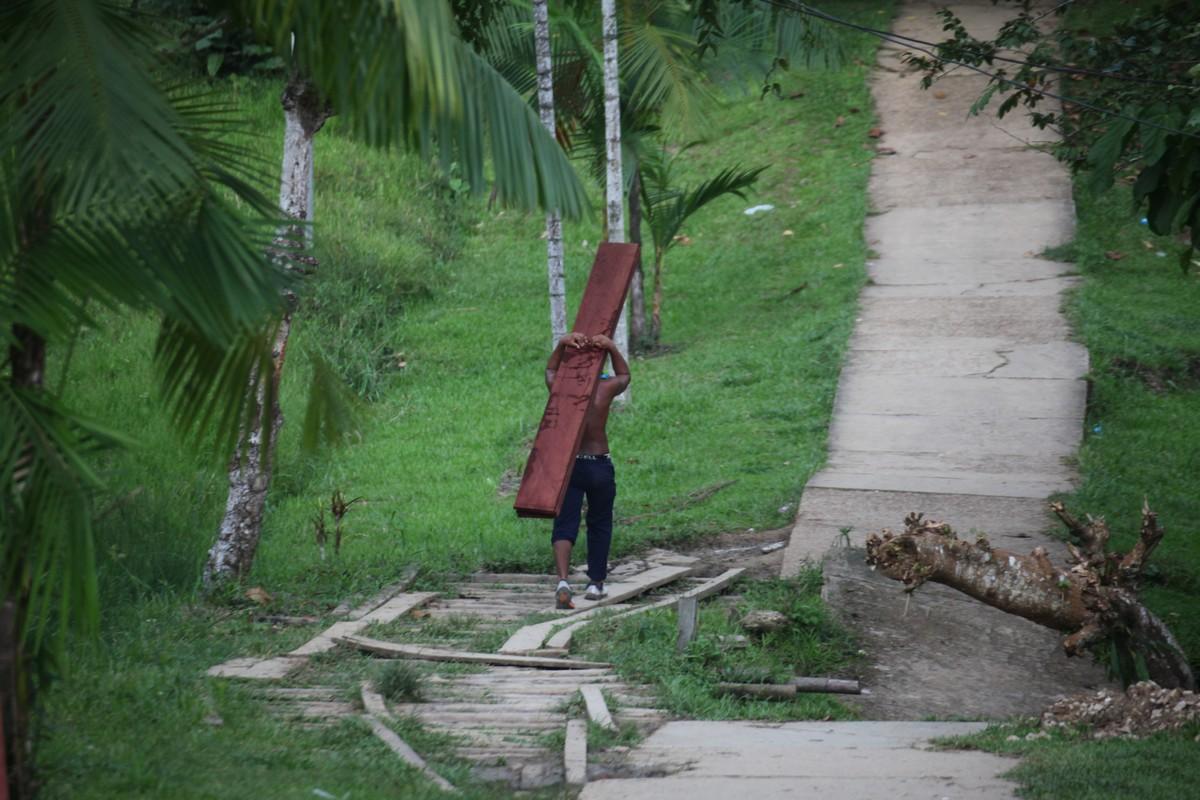 Transport drewna w wiosce
