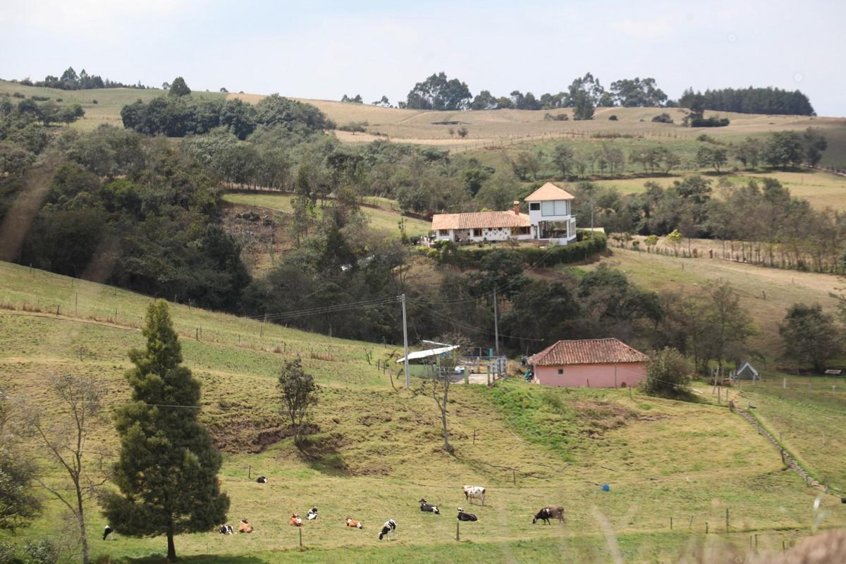 W krajobrazie zaznaczają się również pojedyncze gospodarstwa
