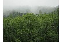 Bieszczady_2013