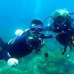 Nurkowanie na Filipinach - fot. z arch.Marek Mencel (1)