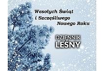 nowy_rok_2016_2017