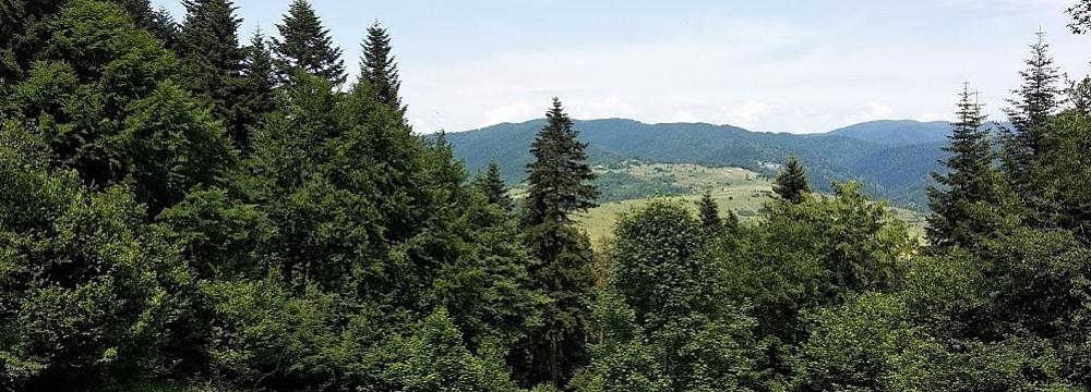 w_górach