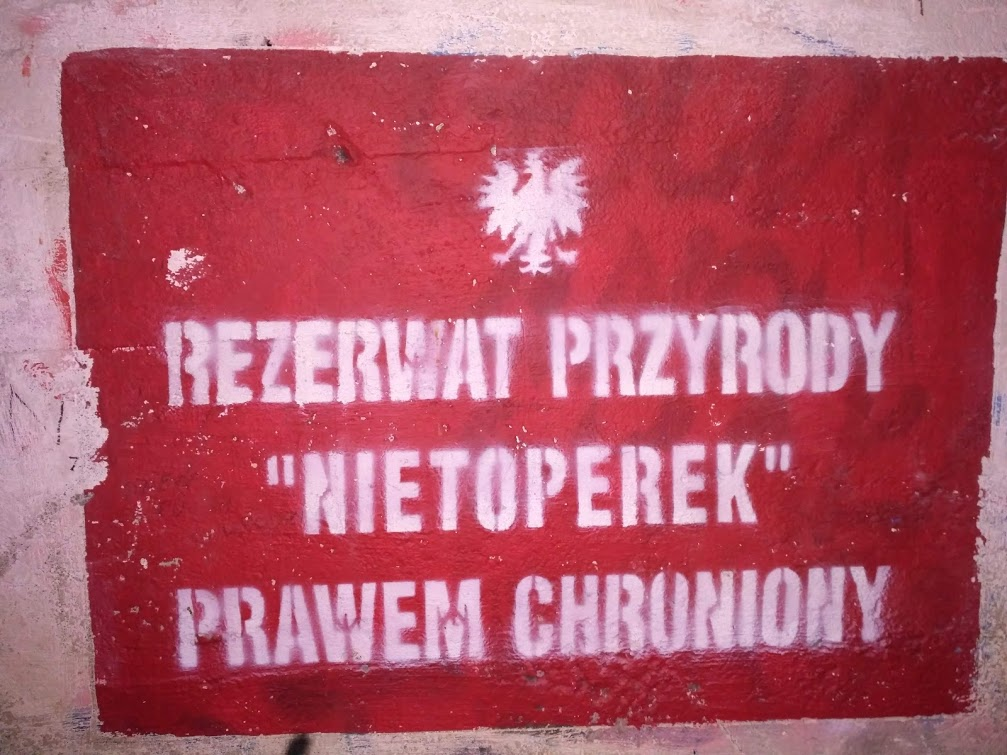Nietoperek_rezerwat_R_S