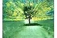 Drzewo na górce w Trzcinicy Jan W. Malik 2018 akryl